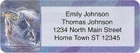Follow Your Dreams Booklet of 150 Address Labels Personal Checks