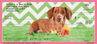Chevron Dachshund Personal Checks