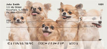 Lovable Chihuahuas Personal Checks