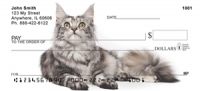 Maine Coon Cats Personal Checks - Cat Checks