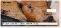 Hog Heaven Personal Checks