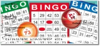 Bingo Personal Checks