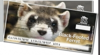 NEW Zoo Endangered Species Side Tear Personal Checks