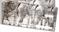 Kay Smith Zebra Side Tear Personal Checks