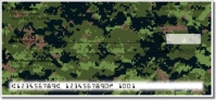 Digital Camo Personal Checks
