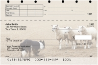 Border Collie at Work Top Stub Personal Checks